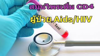 สมุนไพรไทยเพิ่ม CD4 ผู้ติดเชื้อเอดส์