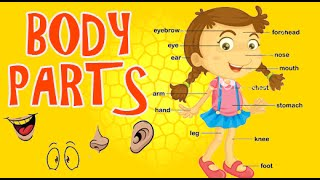 Learn Human Body with the kids | Human Body Parts |  Part 2 Animated
