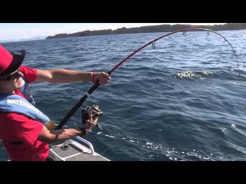 Fishing and Adventure Season 2 Episode 8 - Tauranga