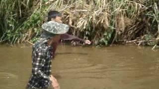 จับปลา มีฮากัน...