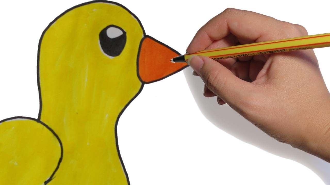 DIBUJOS DE ANIMALES UN PATO FACIL PASO A PASO: Dibujos para niños a ...