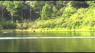 Ken Beam Remote Fishing In Delaware National Park - Watch When Sharon Sees A Bear!