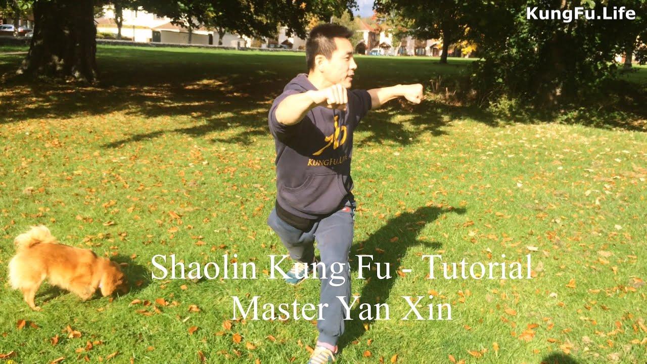 shaolin kung fu Tutorial - Gong Bu Diagonal Shape - Gong Bu Xie Xing