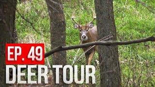 PUBLIC LAND Bowhunting Action, RARE Encounter! - DEER TOUR E49