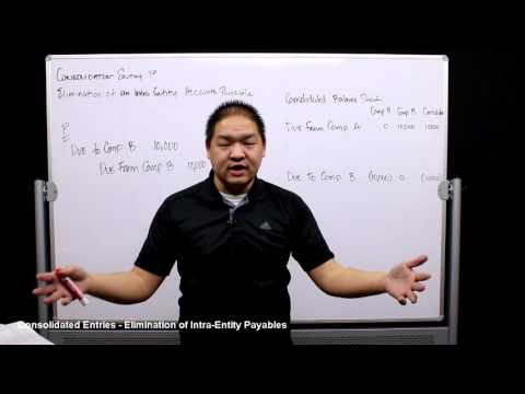 lesson-5---consolidated-entries---elimination-of-intra-entity-payables