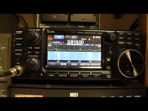 Icom IC-7300 Tips and Tricks - Firmware Update