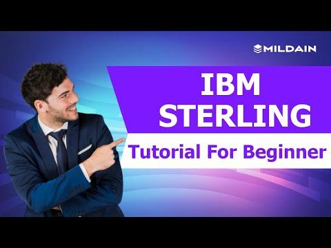 IBM Sterling B2B Integrator Tutorials For Beginners| IBM STERLING Online Training (2019)