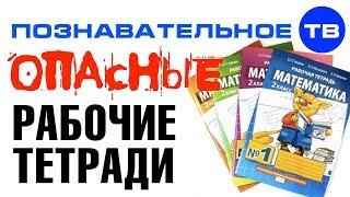 Чем опасны рабочие тетради школьника Познавательное ТВ Айрат Димиев