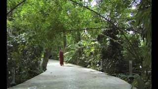 OSHO: The Silent Explosion - a visit to the Osho International Meditation Resort thumbnail
