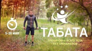 Жиросжигающая Круговая Табата-Тренировка Без Тренажеров с Музыкой и Табата-Таймером Для Новичков