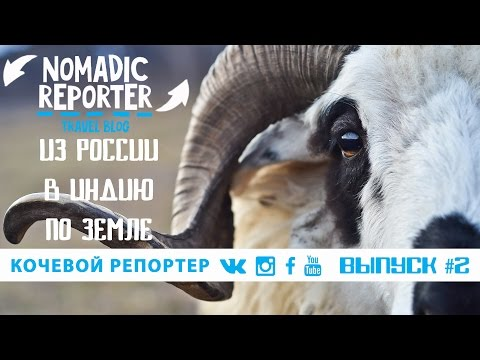 Ингушетия: в роли пастуха | Кочевой Репортер #2
