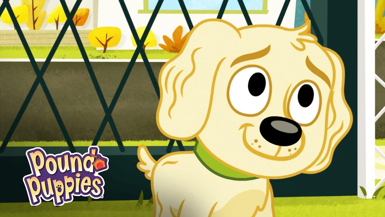 Pound Puppies Dog Returns