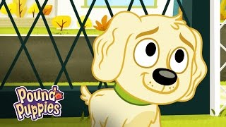 Pound Puppies - Dog Returns