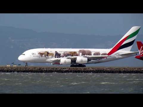 """SFO: """"Wildlife"""" Emirates (UAE 226) to Dubai [A380-800][A6-EOM]"""