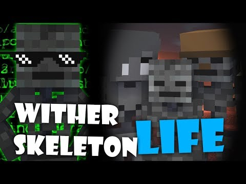 Monster School : WITHER SKELETON LIFE - Minecraft Animation thumbnail