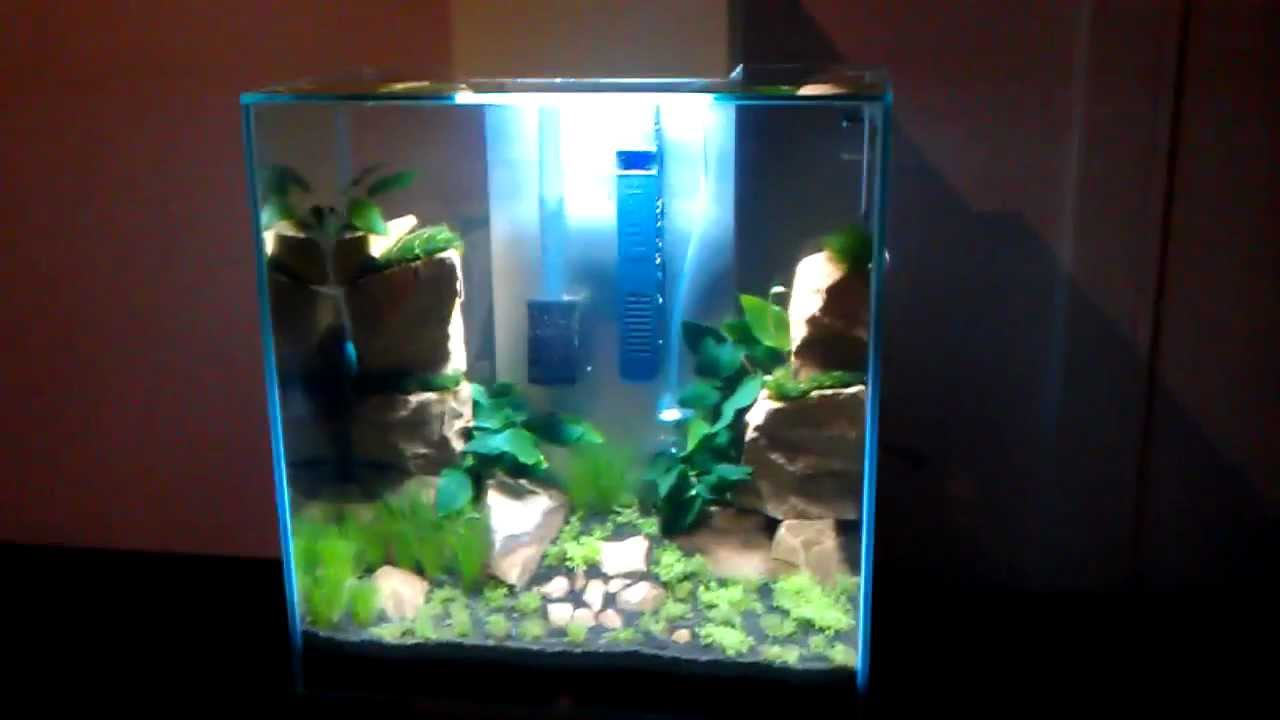 Fluval edge aquarium fish tank 46 litre - New Fluval Edge 2 46 Liter Just Planted Part 3 Twin Peaks In Hd