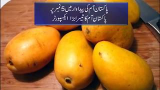 Pakistan Mango Production