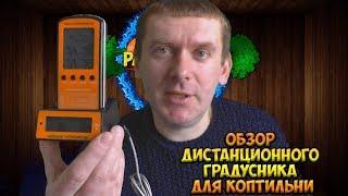 Обзор дистанционного градусника для коптильни