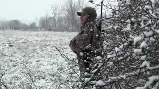 Fox Hunting PA.