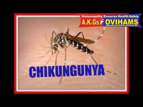 Homoeopathy in Chickunguniya, Dengue - Prof.Dr. A.K Gupta
