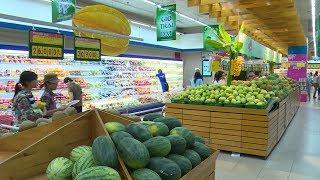 Tin Tức 24h: Nhiễu loạn thị trường thực phẩm nông nghiệp hữu cơ