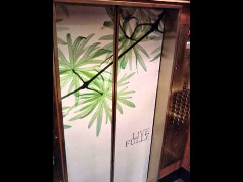 Adinvader Elevator advertising Wrap Interior and Exterior wr