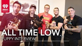 All time low puppy interview! | #lovepup with johnjay