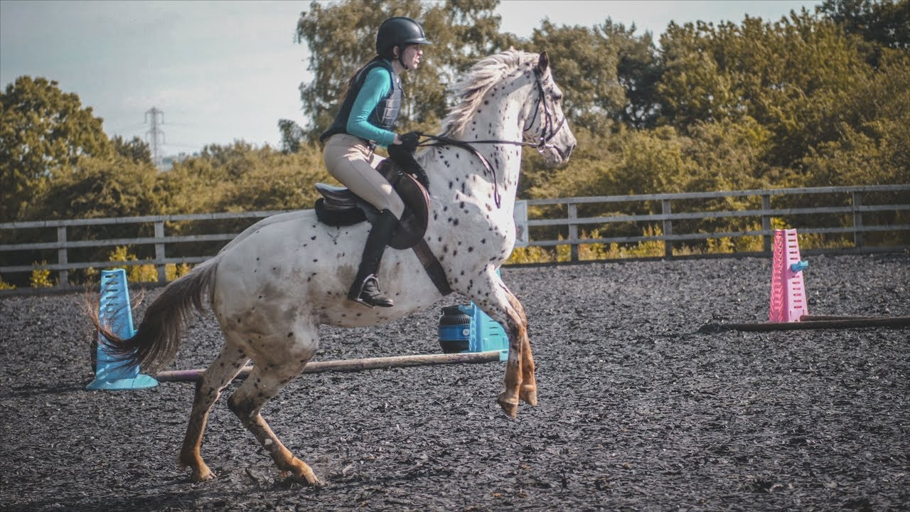Lesson on FRESH Horse, Riding FAIL | Equestrian Vlog