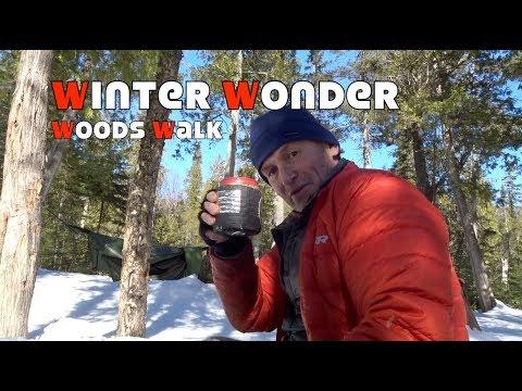 Winter Wonder Woods Walk