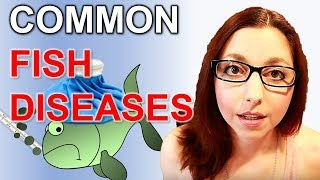 5 Common Fish Diseases And How To Spot And Treat Them