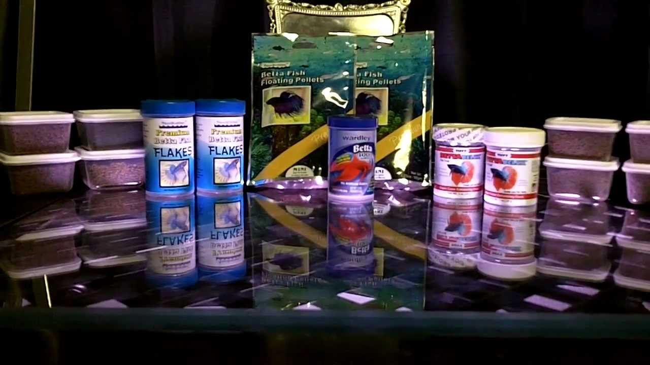 Best betta fish food on earth avail now youtube for Best food for betta fish
