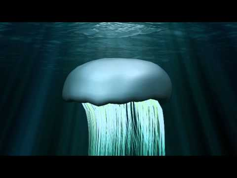 Birdemic 2: The Resurrection—Giant Jumbo Jellyfish!
