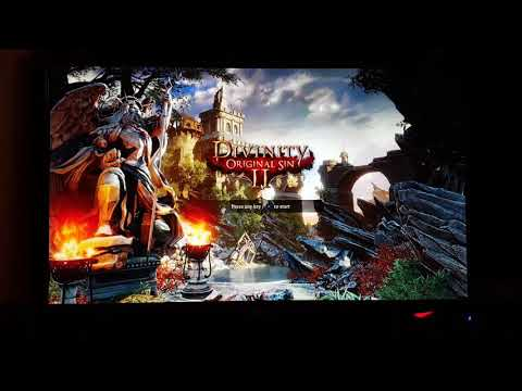 how to play local co op divinity original sin