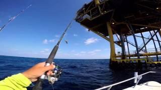 Deep sea 2015 Full HD -HDMCC-Houston