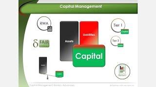 Capital Management | Basel 2 & 3