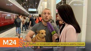 Смотреть видео В Москве открыли первый участок Некрасовской линии метро - Москва 24 онлайн