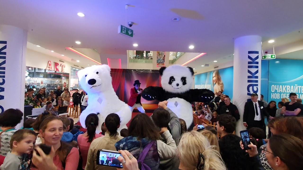 Шоуто на танцуващите мечки от HOLLYWOOD BEAR SHOW