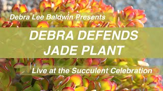 Debra Defends Jade Plant