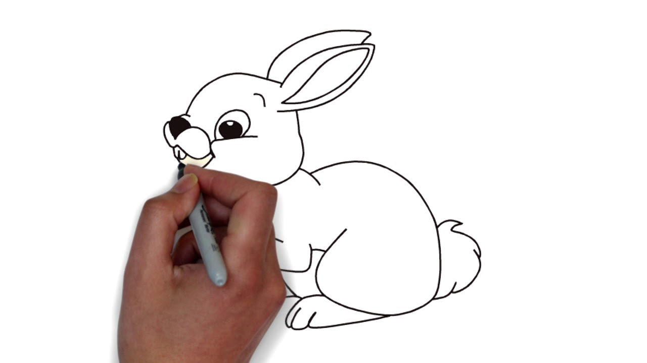 Printable Rabbit Coloring Pages For Kids , drawing for kids - YouTube