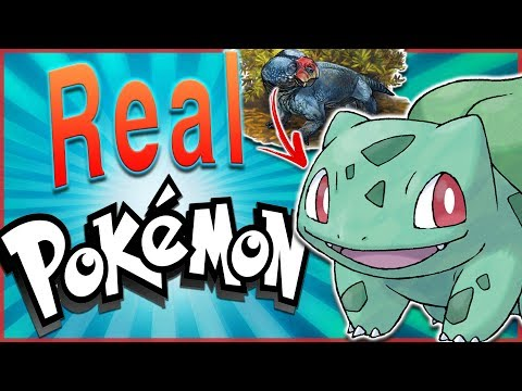 5 REAL LIFE Animals That Were Inspired by Pokémon!