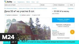 Сколько стоит аренда подмосковной дачи - Москва 24
