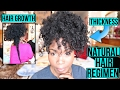 Natural Hair Regimen for Hair GROWTH & THICKNESS | Moisturizers, Shampoos & Conditioners