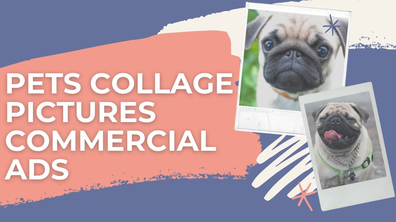 Pets Collage Pictures Commercial Ads