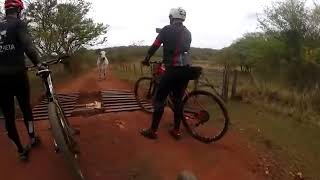 Boi ataca ciclistas