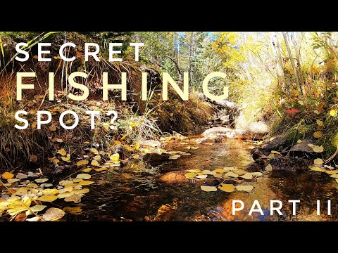 Colorado Springs Fishing - Search For SECRET Trout Spot - Part 2 - Colorado Fall Hike