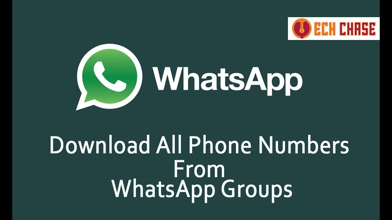 Download All Phone Numbers From WhatsApp Groups - 100%