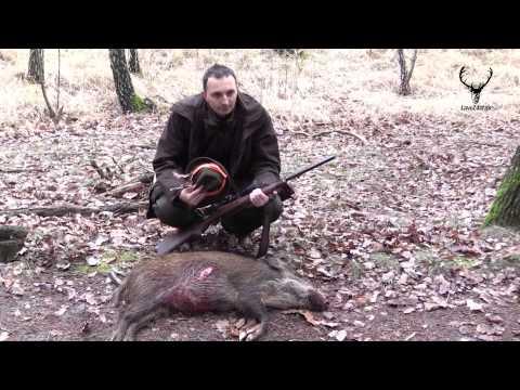 Spoločná poľovačka na diviaky Lakšárska Nová Ves (Common hunting for wild boar)