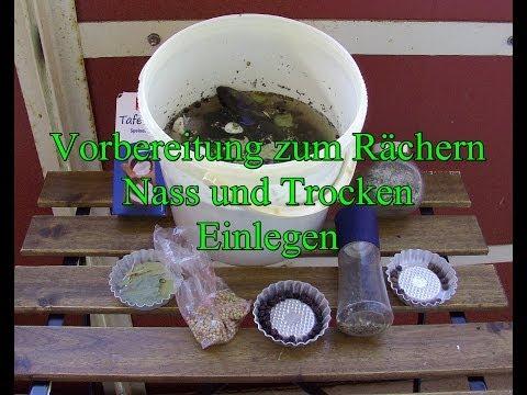 let´s-fish-tutorial:-fisch-zum-räuchern-einlegen,-trocken-und-nass-(hd)