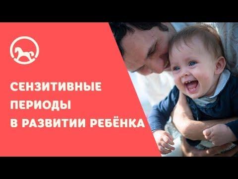 Сензитивные периоды в развитии ребёнка