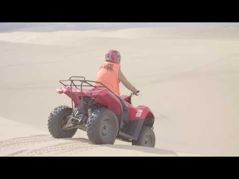 Sand Dune Adventures Visitor Experience
